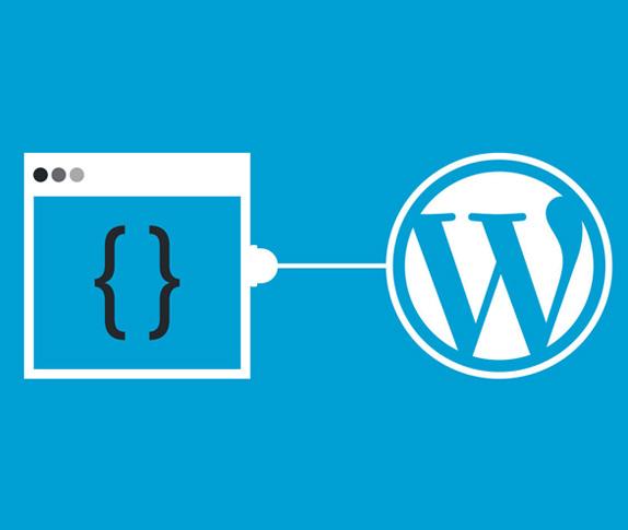 WordPress Destek Hizmeti